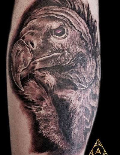 Bird of Prey Tattoo