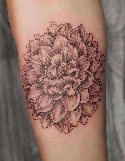 Dahlia Black Gray Tattoo