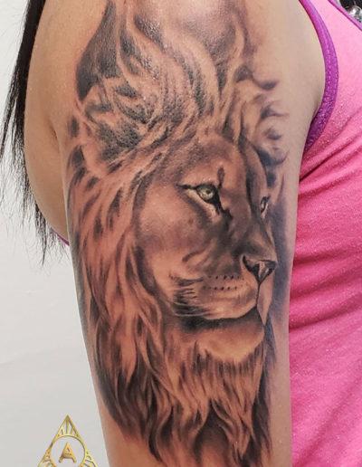 Peaceful Lion Tattoo